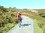 Vegetarian cycling holiday in North Wales